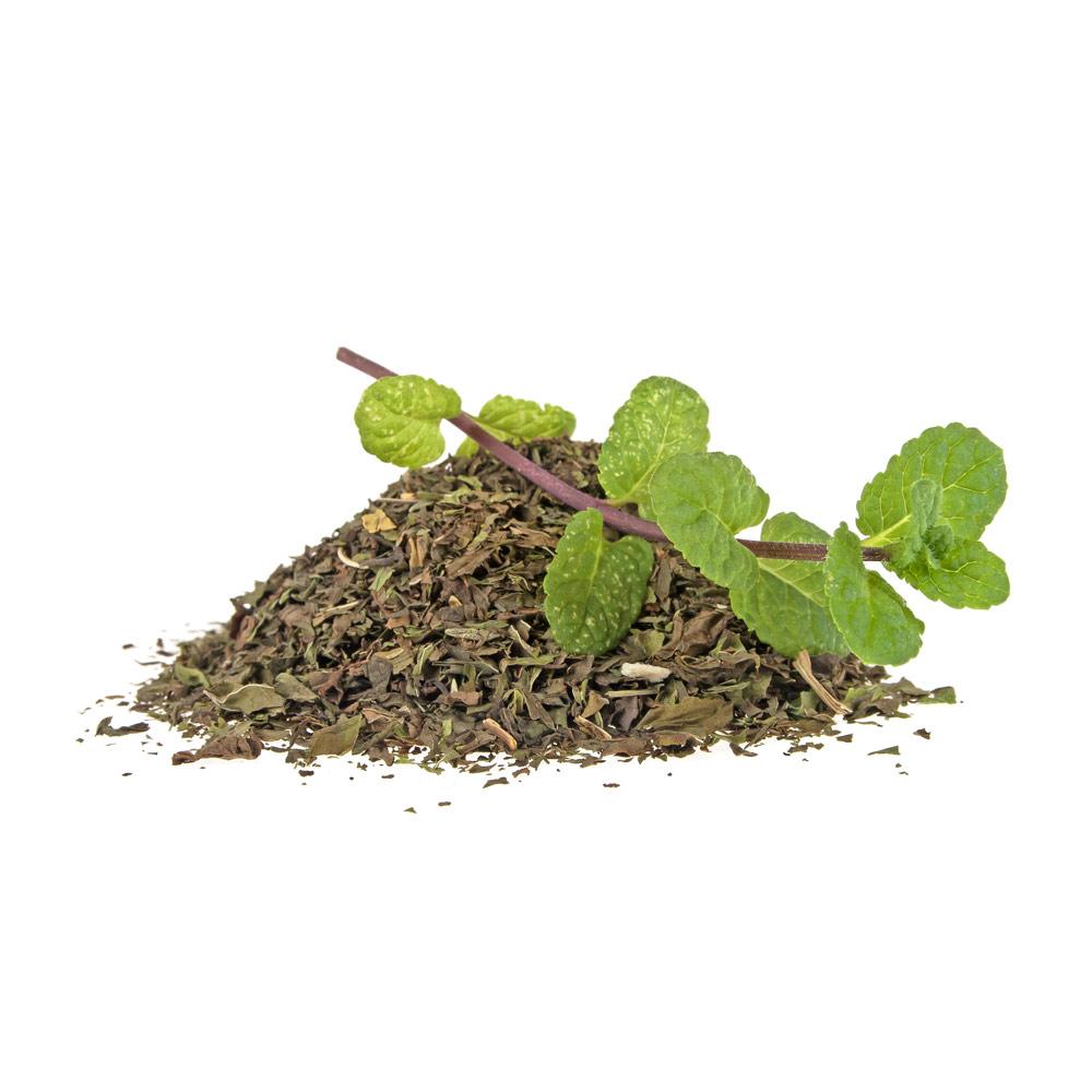 Minze-für-Tee
